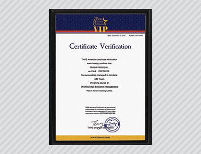 tnrs vip certificate inquiry