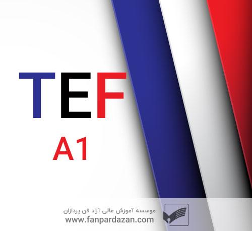 آمادگی آزمون TEF (سطح a1)