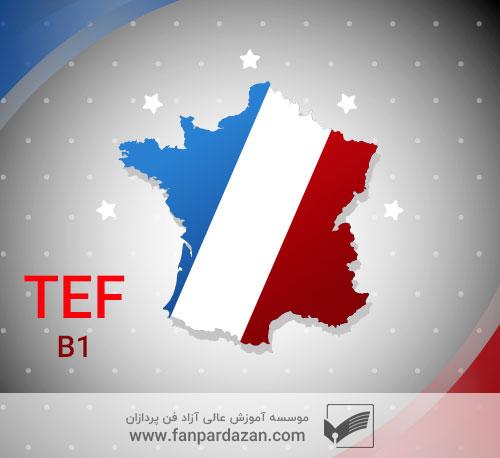 آمادگی آزمون TEF (سطح b1)
